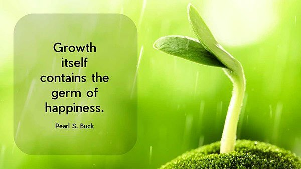 Best growth sayings