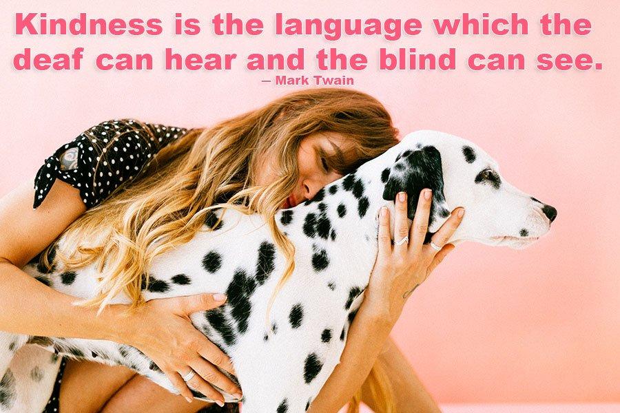 Kindness is wisdom