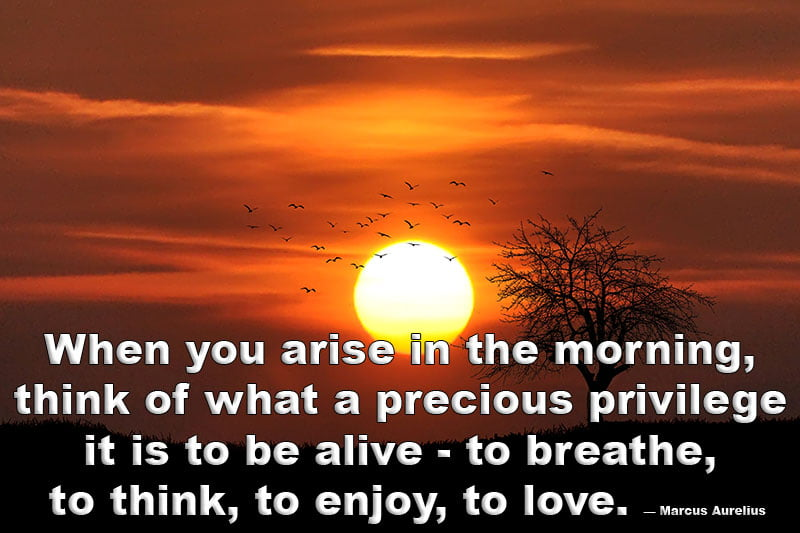 Motivational positive good morning quotes
