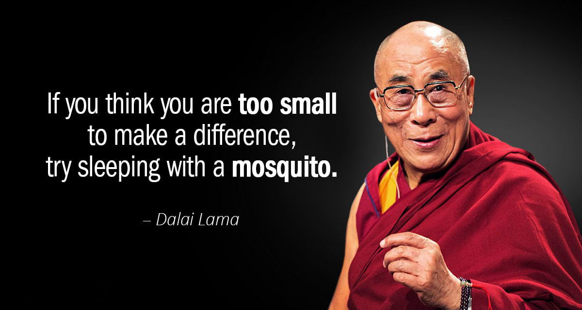 If you think you are too small Dalai Lama